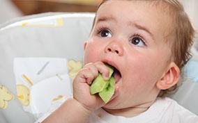 Прикорм детей с алеергией до года