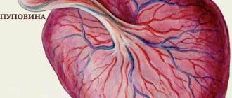 Раннее созревание плаценты -серьезный патологический процесс