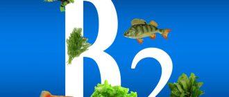 Рибофлавин витамин B2 - это очень важное вещество для организма