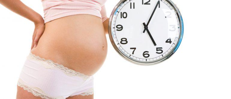 Беременность 31 неделя