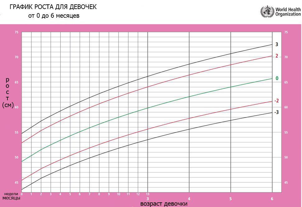 график роста для девочек от рождения до 6 месяцев фото