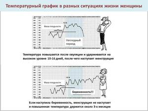 Базальная температура - норма и возможные отклонения