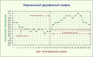 Измерения базальной температуры - пример графика записей