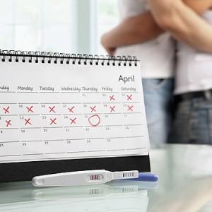 Калькулятор расчета срока беременности