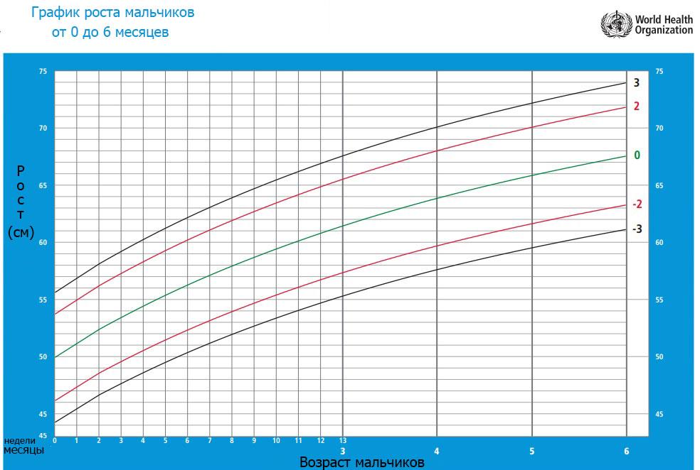 график роста для мальчиков от 0 до 6 месяцев фото