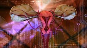 Тест на фертильность у женщины - домашние тест-полоски