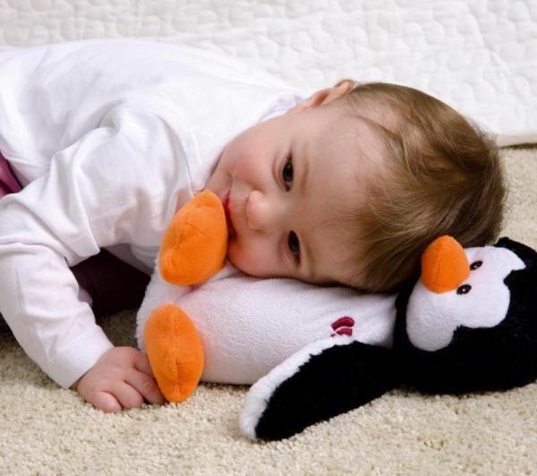 Игрушка-грелка для новорожденных приносит пользу и развлекает малыша