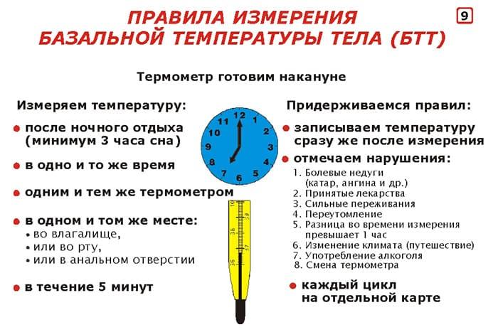 Как измерять базальную температуру