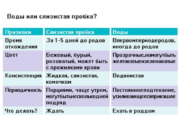 Различия между водами и слизистой пробкой