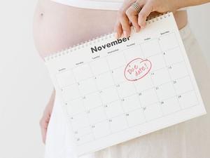Дата зачатия ребенка