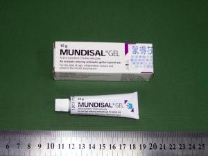 мундизал