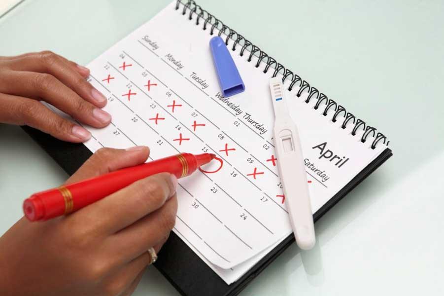 календарь и тест