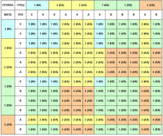 Таблица 1. Возможные варианты группы крови реьенка в зависимости от группы крови родителей