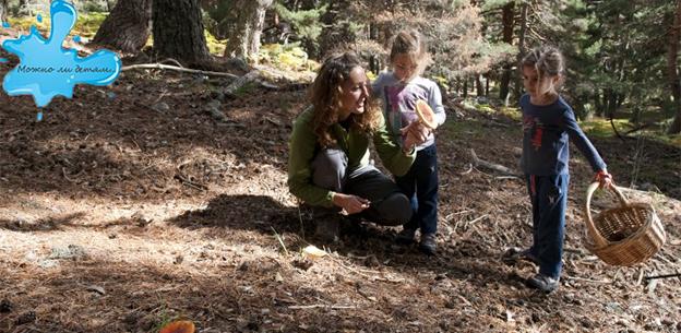 Можно ли детям давать грибы: со скольки лет их можно есть, какие лучше, что делать при отравлении и советы педиатра