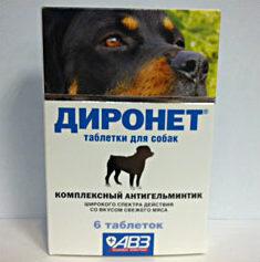 Диронет для собак