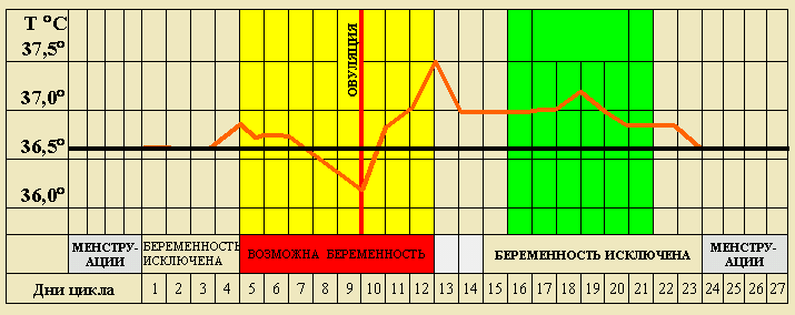 График цикла
