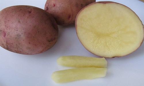 Для лечения геморроя кормящая мамочка может использовать свечи из картофеля