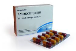 Особенности лечения Амоксициллином: сколько дней принимать антибиотик, чтобы победить болезнь?